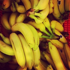 LOTS of Bananas